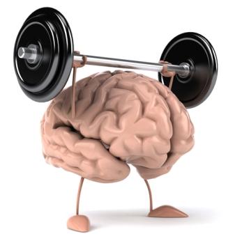 Hersen trainen